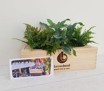 Dag van het Gezin - Gezinsbond schenkt bloembakken aan gezinsvriendelijke initiatieven