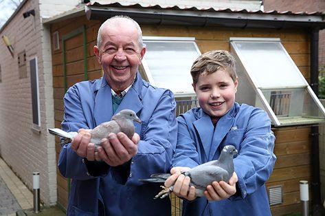Duivenmelker Hugo deelt zijn passie met kleinzoon Noah: 'Duivensport, dat zit in je bloed'