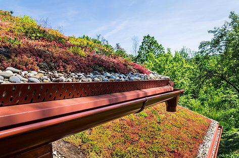 Van urban jungle tot groen dak: voor het tuingevoel zonder tuin