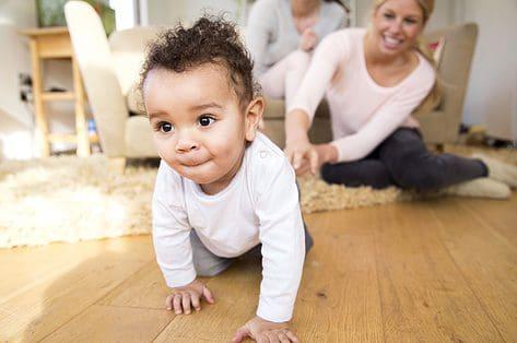 stem gezin groeipakket