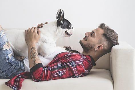 recht op een huisdieren