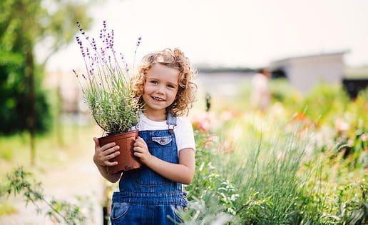 Water sparen in de tuin: zo doe je dat
