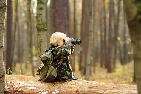 Doen: activiteitenwaaier tijdens de De Week van het Bos